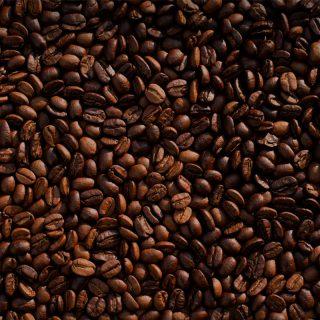 Biologische Eerste Hand Koffiebonen Ethiopie